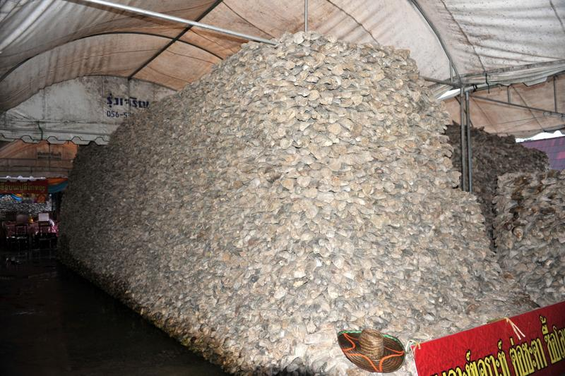Destination: Wat Chedi Hoi — the temple with oyster shells and a packrat tendency (Central Thailand) - Thailand -