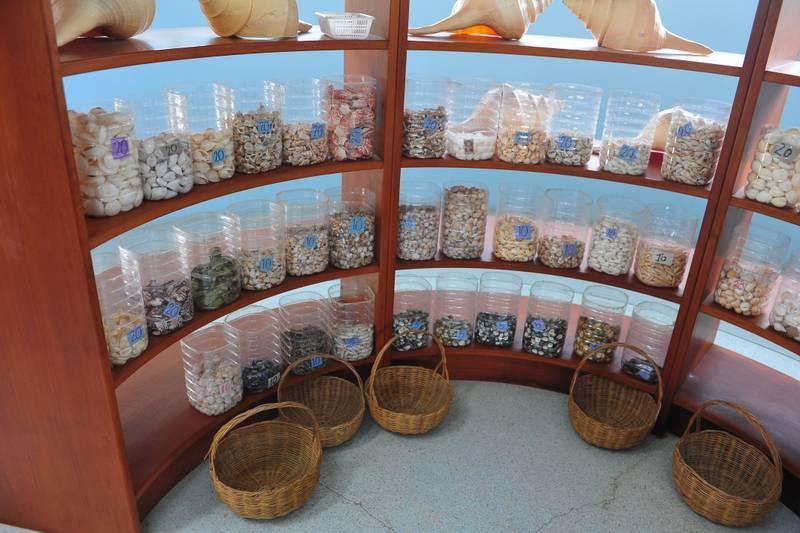 Destination: Phuket Seashell Museum (Phuket, Thailand) - Thailand -